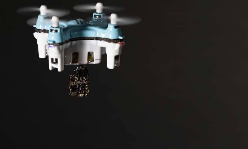 """""""Floating Insects Being Used to Release Sensors from Air."""""""