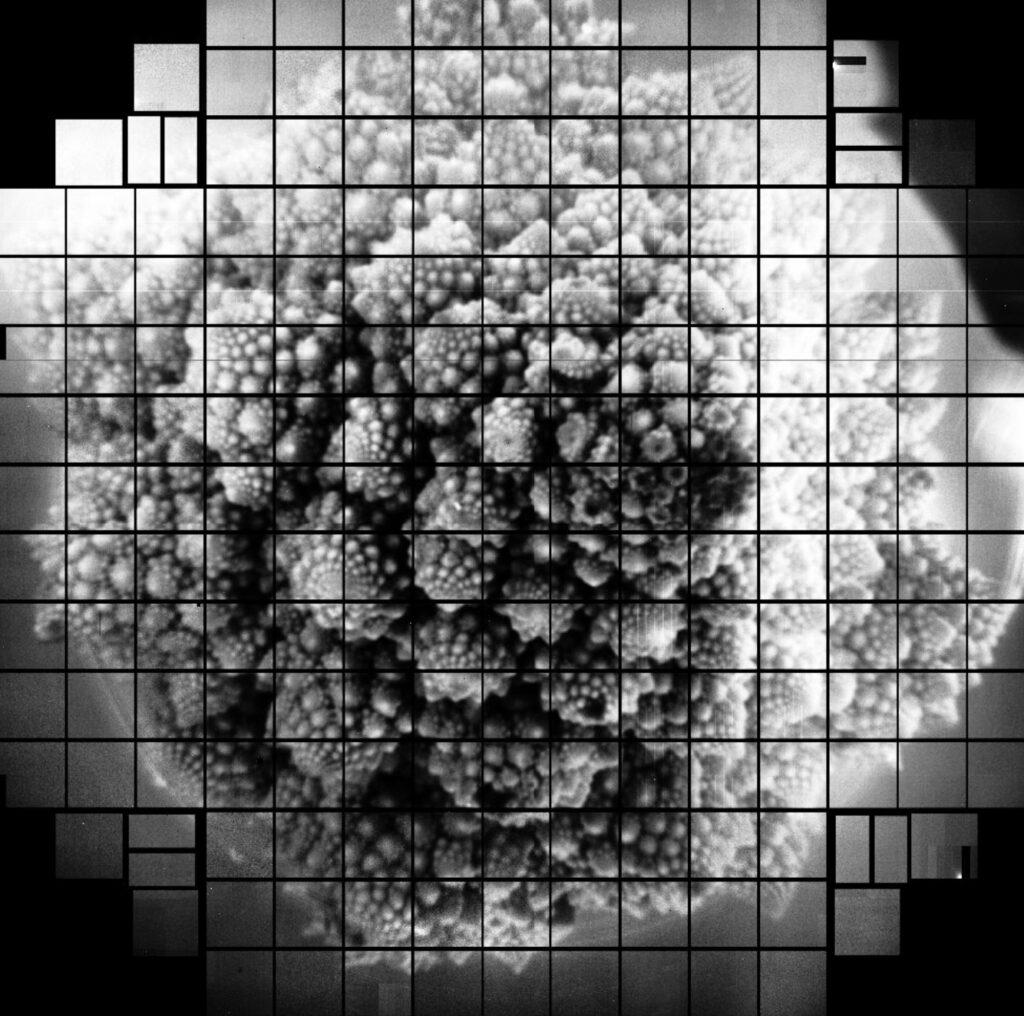 वैज्ञानिको ने दुनिया की सर्वेच्च 3,200 मेगपिक्सल तस्वीर को कैप्चर किया